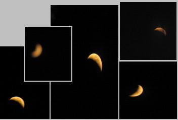 My Moon Montage