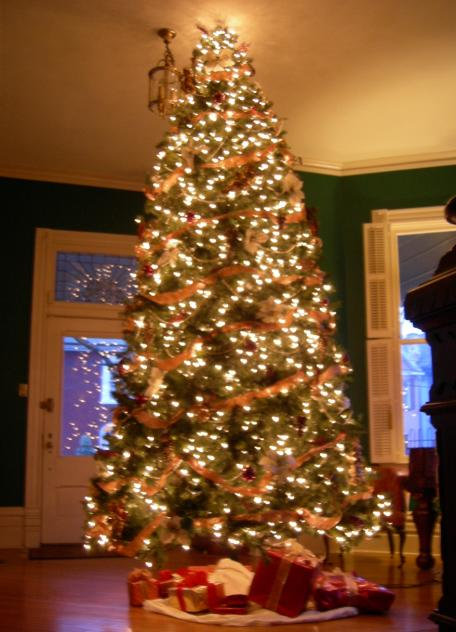 12 foot - 12 Foot Christmas Tree