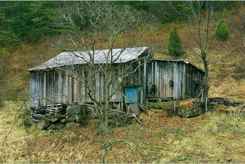 distinctively southern shacks sweet iced tea